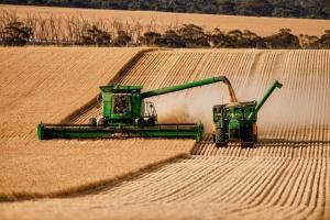 image of harvest