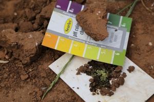 image of acid soils