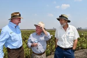 image of Paul McTintosh, John Kerlin and Hugh Reardon-Smith