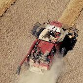 Time to halve canola harvest losses