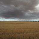 Better use of seasonal forecasting: adviser input sought