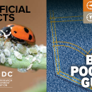 Beneficial insects – the back pocket guide