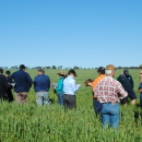 GRDC seeks applications for Regional Panel positions