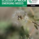 Ecology of major emerging weeds