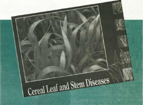 """Cover of the book """"Cereal Leaf and Stem Diseases"""""""