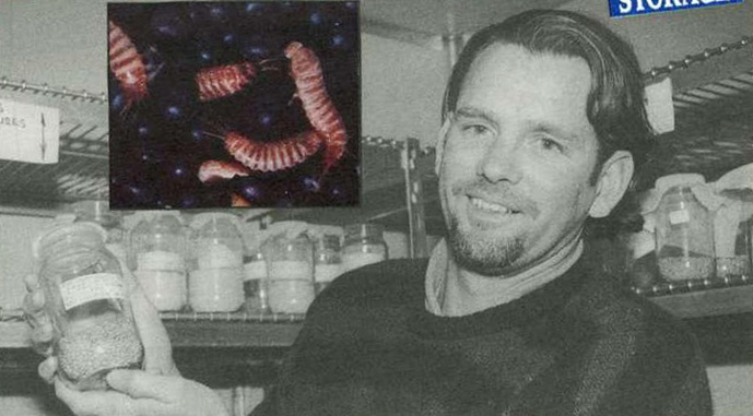 Mr Rob Emery: DNA technology for quick identification of stored grain pests. INSET: Warehouse beetle larvae. Khapra beetle larvae are identical.