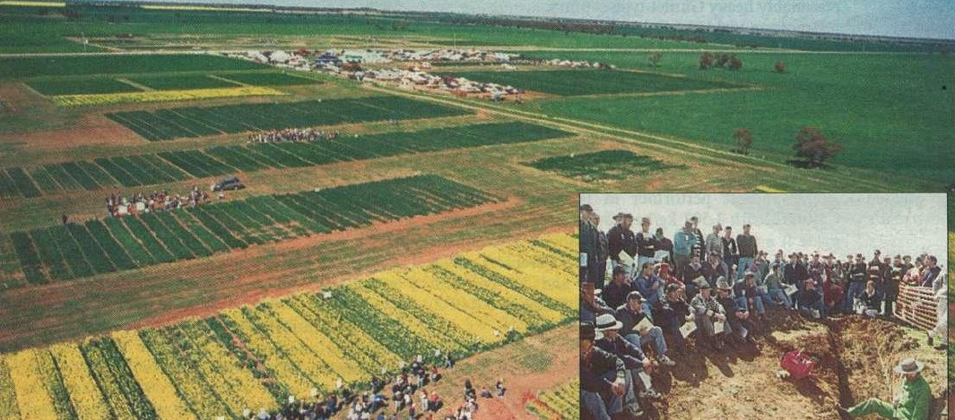 ABOVE LEFT: Farmers at the Birchip Cropping Group's field day, viewing canola trials and listening to John Williamson, of the Centre for Land Protection Research in Bendigo, discuss sodic soils from a soil pit (above).
