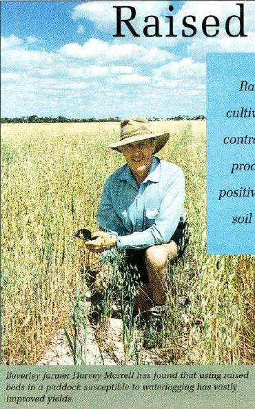 Beverley farmer Harvey Morrell has found that using raised beds in a paddock susceptible to waterlogging has vastly improved yields.