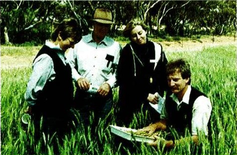 from left: to right: Cathy Hastings, farmer, Ian Hastings, farmer and committee member, Jo Latta, Mallee Research Station, Rob Sonogan, DNRE, Victoria, studying root disease at a focus paddock, Ouyen.
