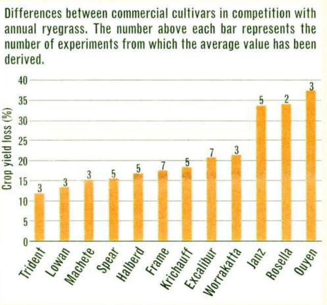 Differences between commercial cultivars in competition with annual ryegrass. The number above each bar represents the number of experiments from which the average value has been derived.