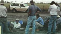 """Growers learn about the """"Willmon' grey clay at the Western Farming Systems annual field day, October 1999, from consultant David McKenzie."""