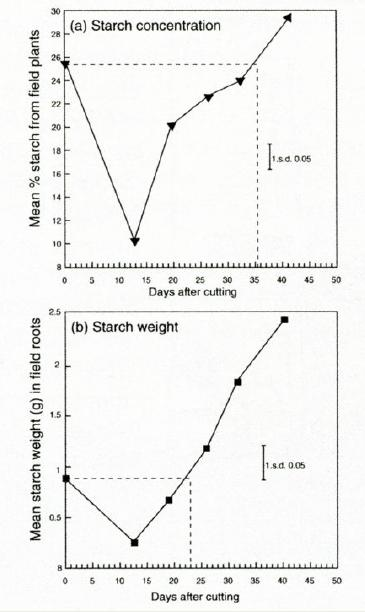 Mean effect of the duration of regrowth on (a) the concentration of starch and (b) the weight of starch in roots of twenty different varieties of lucerne.Mean effect of the duration of regrowth on (a) the concentration of starch and (b) the weight of starch in roots of twenty different varieties of lucerne.