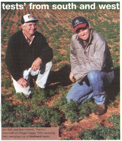 Jim (left) and Ryan Dennis, 'Tracton', Downside via Wagga Wagga, NSW, Surveying their emerging crop of Quilinock lupins.