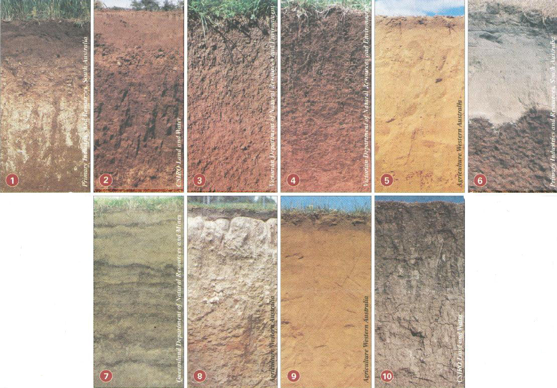 soil types most likely encountered by farmers.
