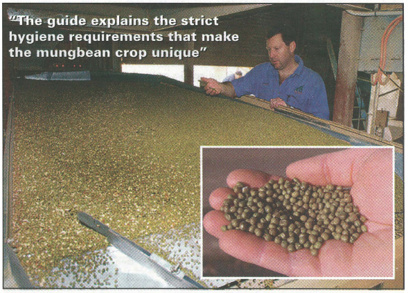 Mungbean grading for quality.