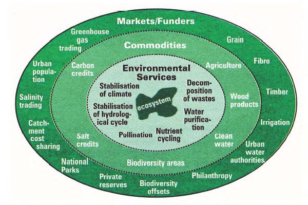 Farm forestry services and their relationship to commodities and markets.