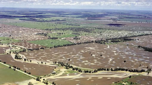 "Challenging country: the ""melon hole"" paddocks of Queensland"