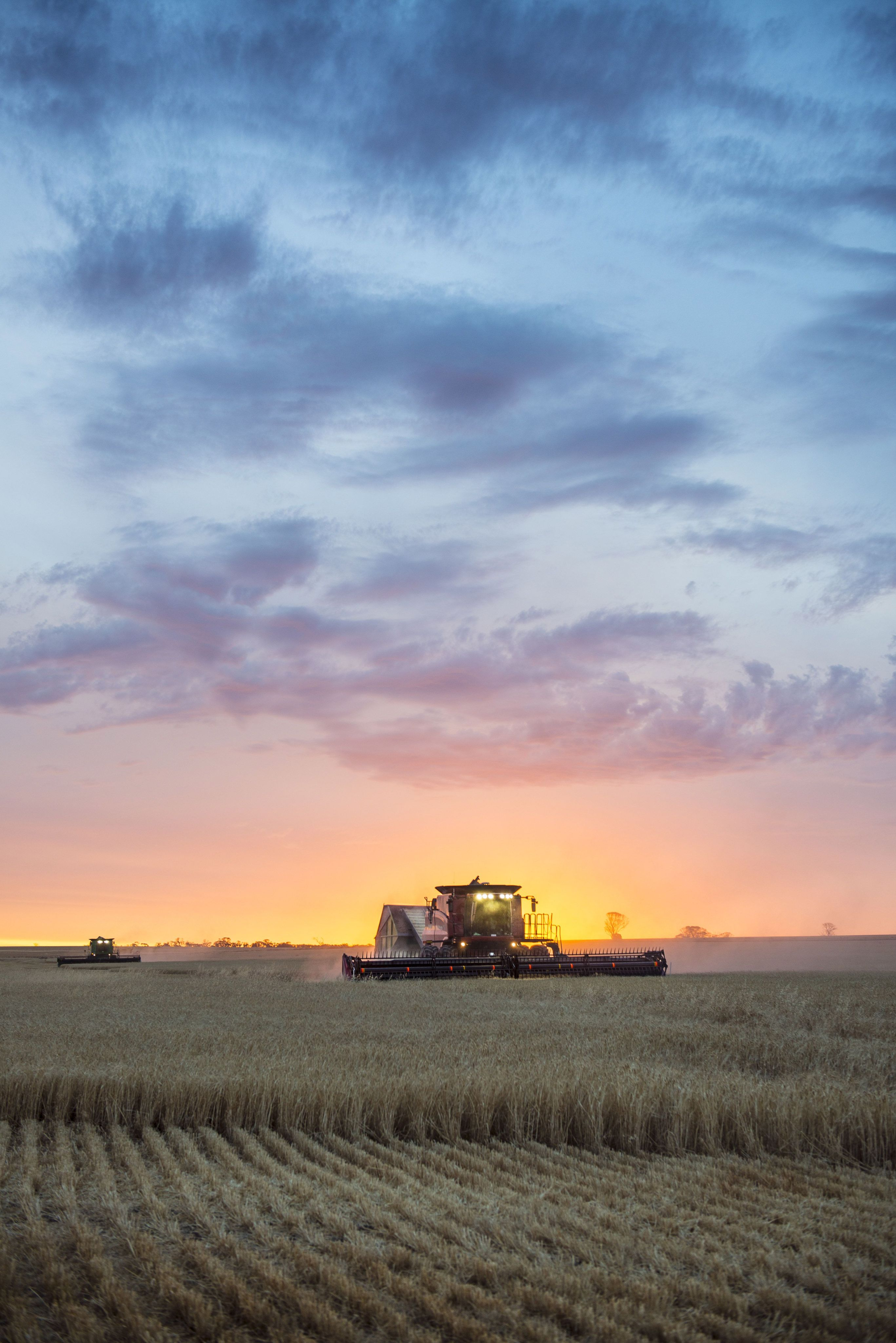 Image of a crop harvest in WA. Photo by Evan Collis.