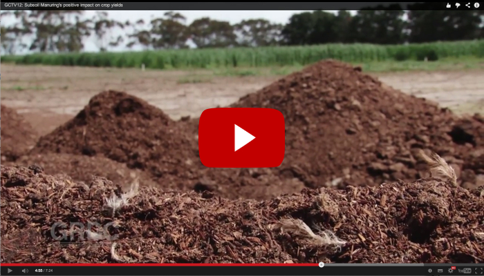 Still image of GCTV story in video player - pile of chicken manure overlaid by red play button