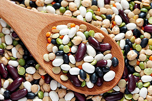 Spoon of various beans and legumes
