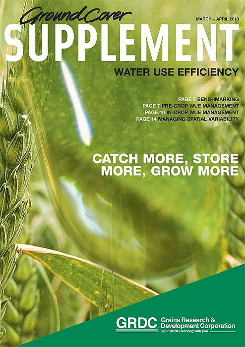 Front cover of the Ground Cover water use efficiency supplement