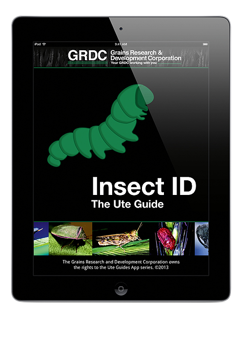 Image of Insect ID: The Ute Guide app