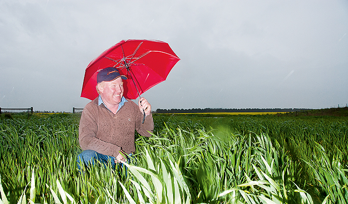 A man in a paddock with an umbrella