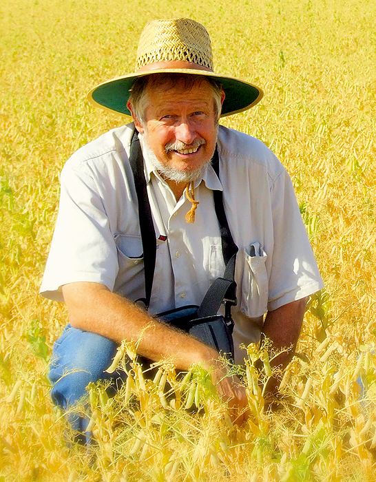 A man wearing a hat in a paddock with crops