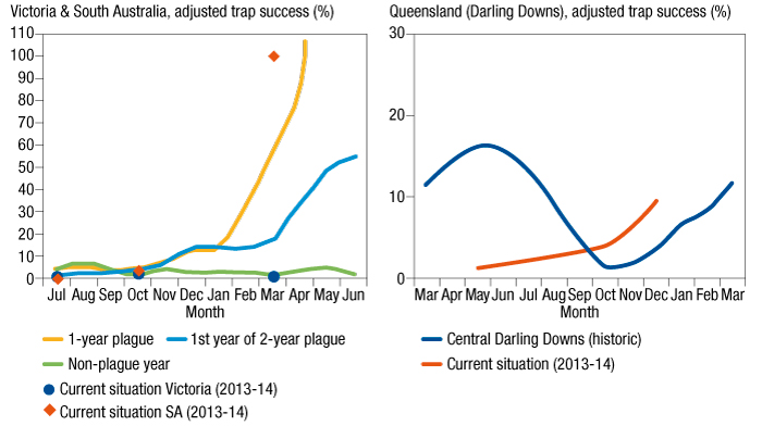 Graphic showing the current monitoring of mouse populations in Victoria, SA and Queensland – compared to past breakouts