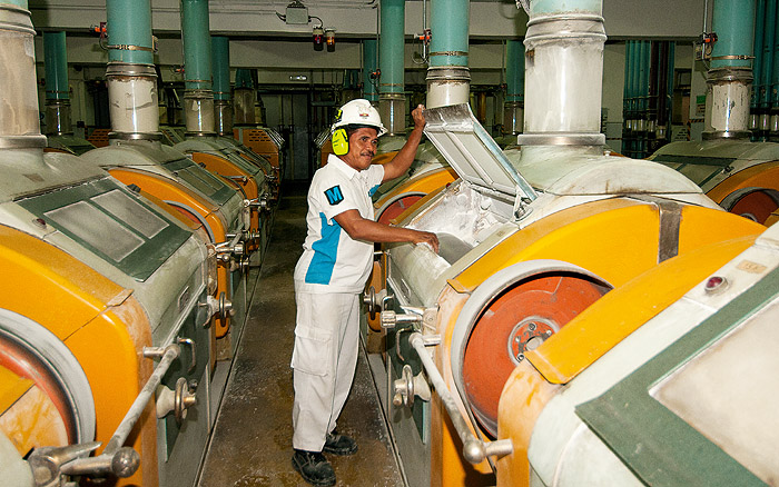 Image of a person in a food processing factory