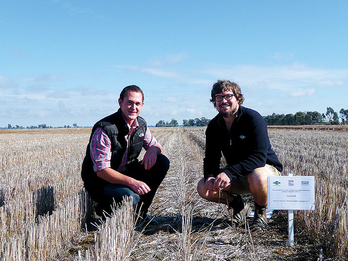 Image of two people in a paddock of stubble