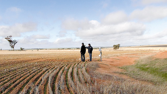Image of people in a paddock of stubble