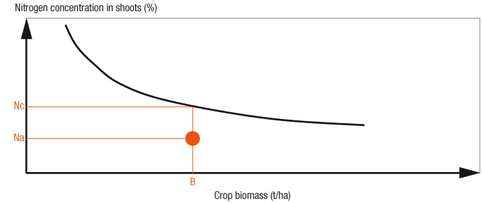 Graphic showing crop nitrogen concentration and biomass