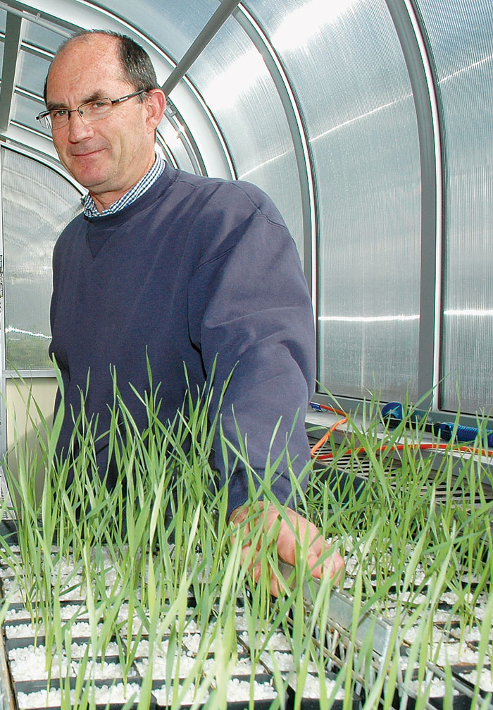 Photo of man in greenhouse