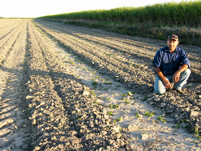 Image of a man in a ploughed paddock