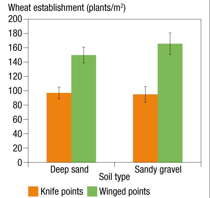 Bar chart showing wheat establishment on a moderately repellent deep sand and severely repellent sandy gravel at Badgingarra, WA.