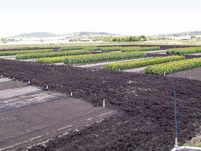 Image of field trials