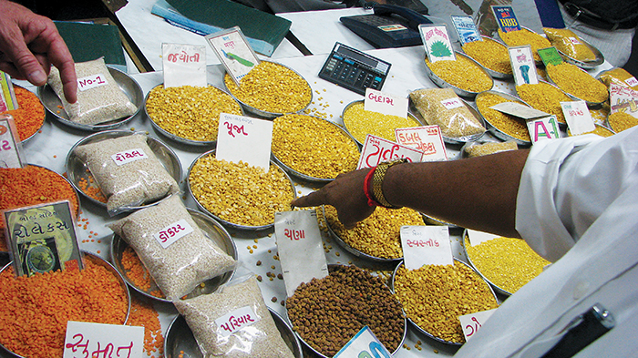 Pulses lined up on table for sale in India