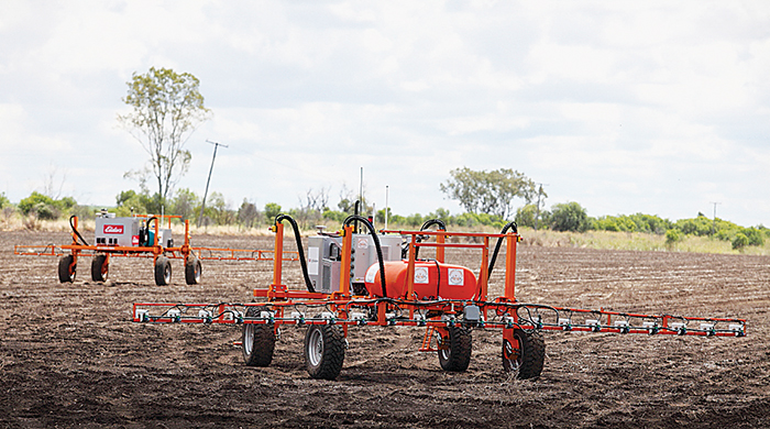A pair of agricultural weed spraying robots