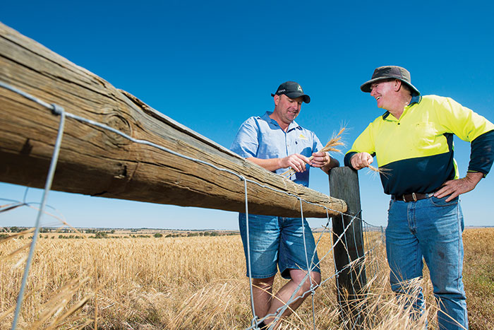 Photo of Mingenew grower Paul Kelly (right) and agronomist Owen Mann