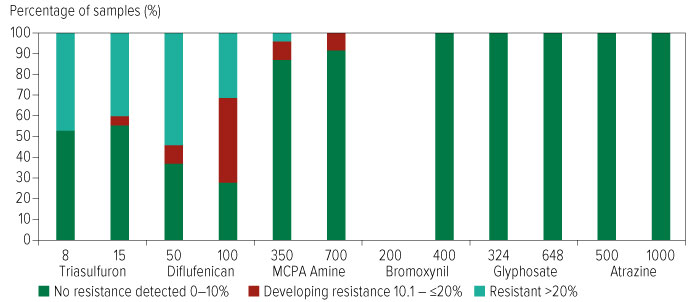 Figure showing percentage of samples with herbicide resistance where herbicides were applied at half and full recommended label rates