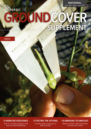 GroundCover 128 Supplement cover image