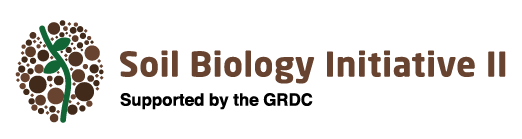 """Soil Biology Initiative II logo: stylised icon of a green plant in brown soil, with the text """"Soil Biology Initiative II - Supported by the GRDC"""" to the right of the icon."""
