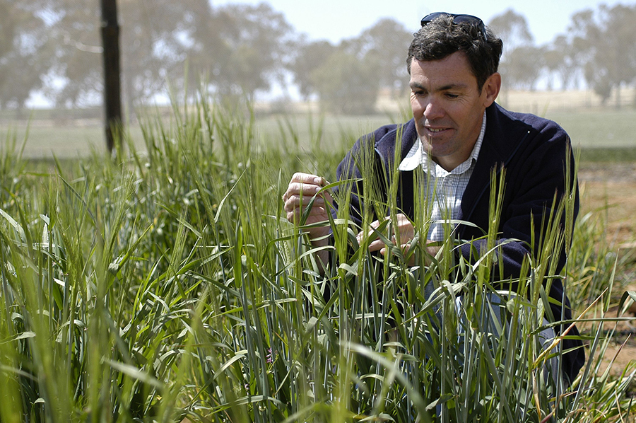 NSW DPI research agronomist Rick Graham