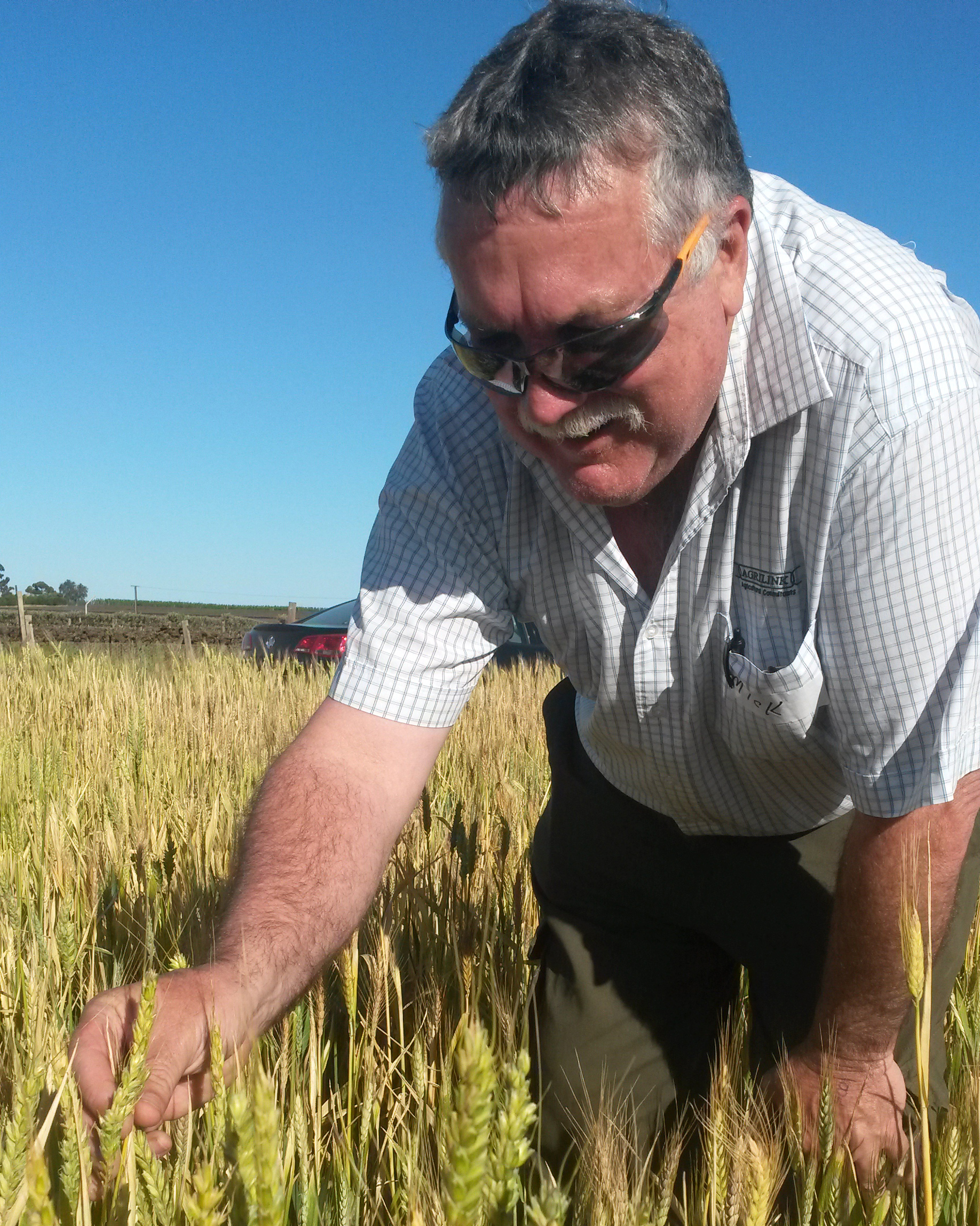 Mick Faulkner inspecting frost damage