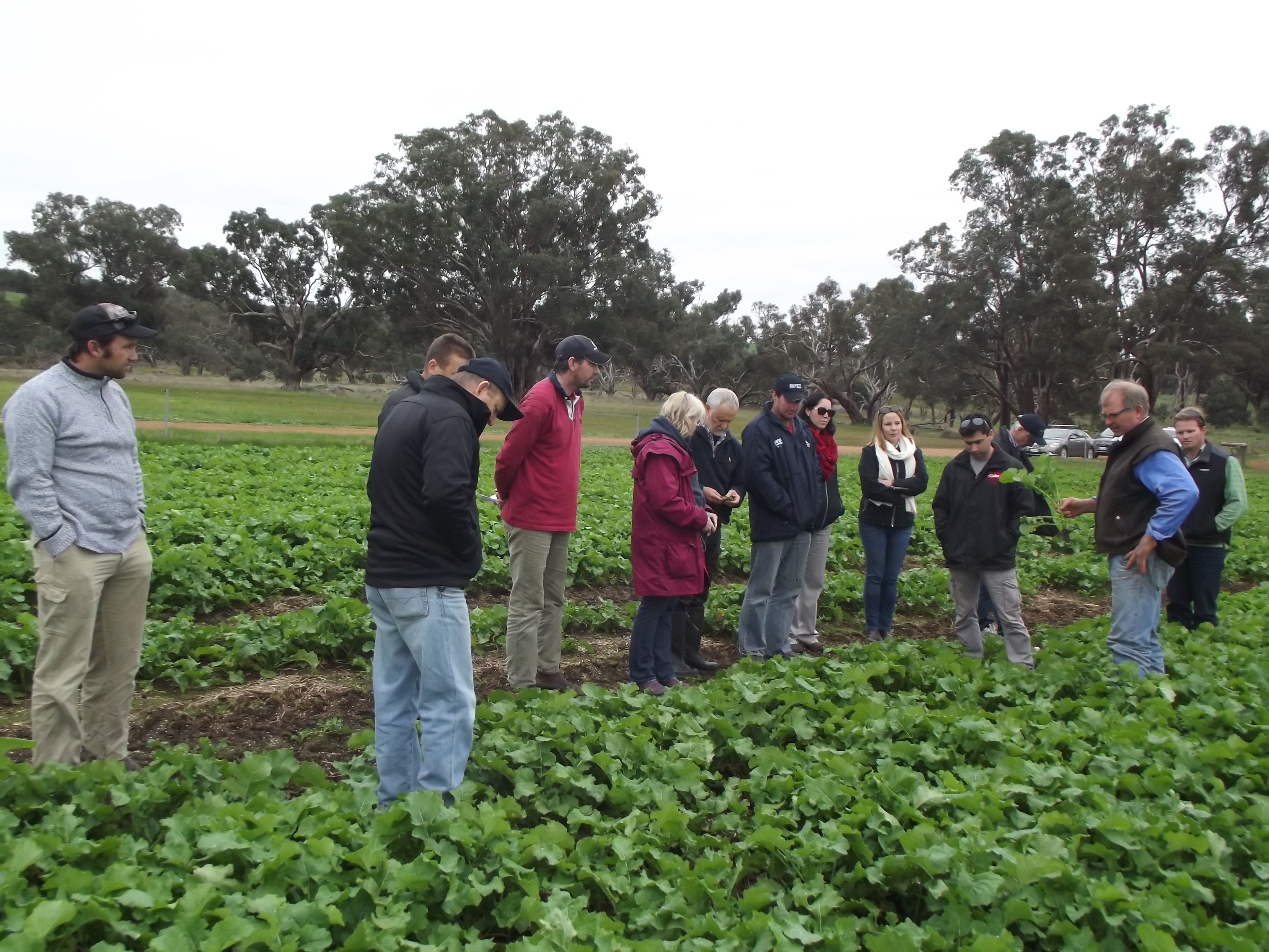 Albany RCSN representatives inspect a paddock near Frankland in July 2015
