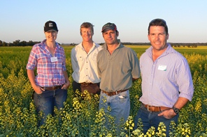 Kelly Becker, Jack Williamson, Glenn Shepherd and James Hassall stand smiling in a canola field on a sunny day.