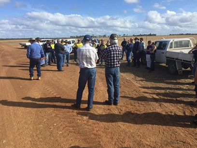Image of growers and advisors attending the recent cane, grain and soil workshop in Bundaberg