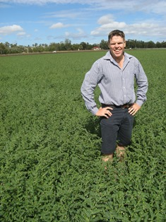 Image of Department of Agriculture, Fisheries and Forestry (DAFF) extension agronomist Darren Aisthorpe