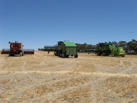 field with 3 tractors from a distance